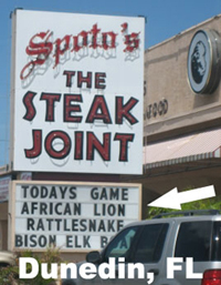 Lions on the menu in Florida