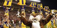 LSU Mascot