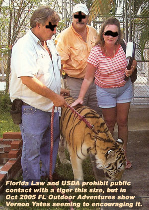 Vernon Yates allows petting of tiger