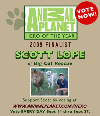 Vote Scott Lope of Big Cat Rescue on Animal Planet