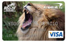 Lion credit card