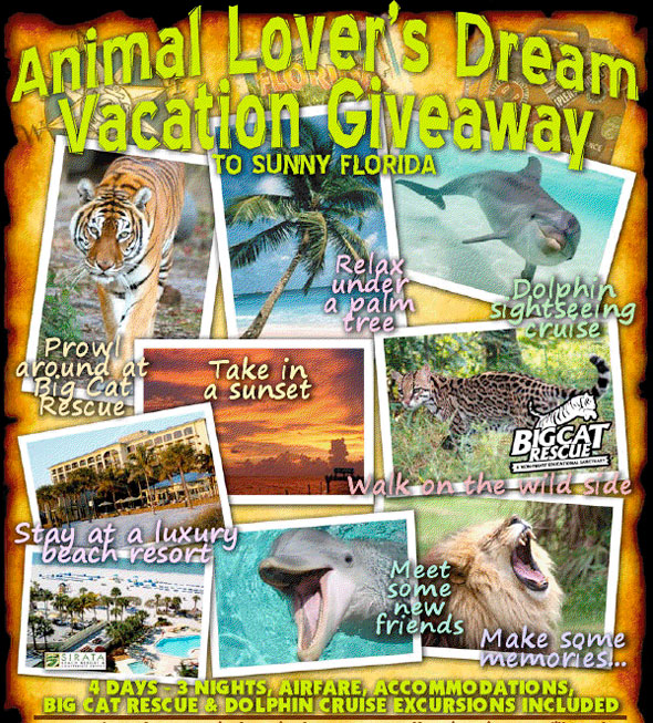 Animal Lover's Dream Vacation