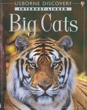 Tiger Cover Photo