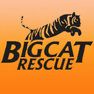 Big Cat Rescue logo small
