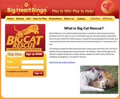 Big Cat Bingo
