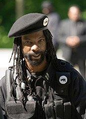 Black Panther Political