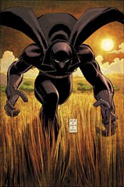 Black Panther Super Hero