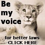 Cat Laws