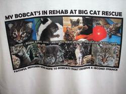 My Bobcat's in Rehab
