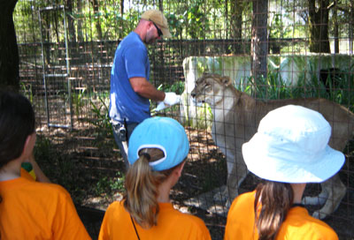scouts at big cat rescue