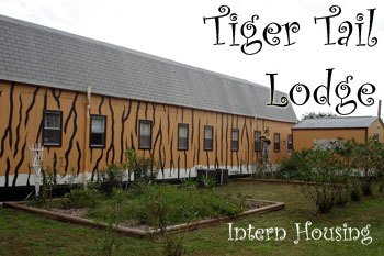 Intern Housing Tiger Tail Lodge at Big Cat Rescue