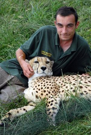 Cheetah Attacks Two Visitors at Eagle Heights Zoo