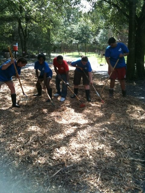 Volunteers and Interns Putting Down Mulch