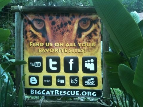 New signage at Big Cat Rescue