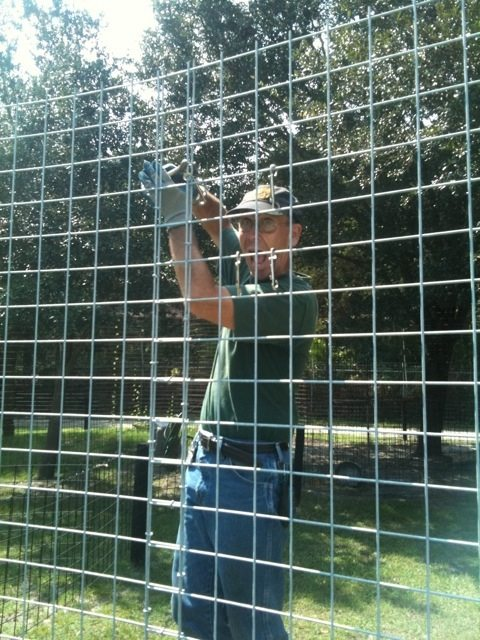 """Volunteer Rich """"Mr Fix It"""" leads a cage building project"""