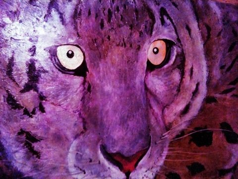 There is always a lot of great art work donated to Big Cat Rescue