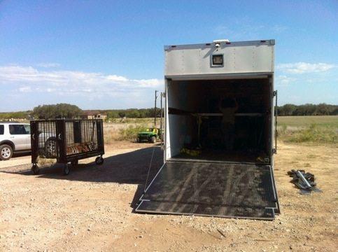 Loading the tigers in San Antonio, TX