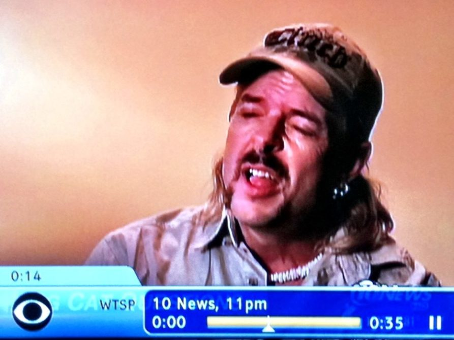 Channel 10 Repeats Big Cat Abusers Lies