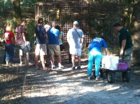 Green Shirt Matt leads a Feeding Tour