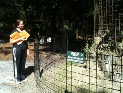 Jamie talking to Jumanji the black leopard at Big Cat Rescue