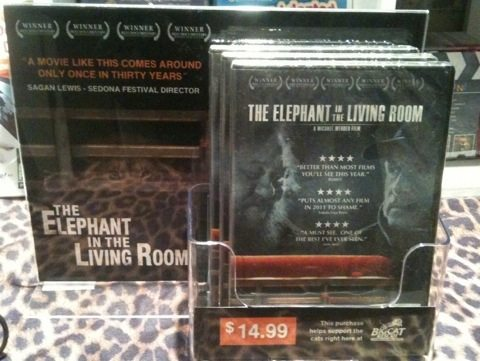 AdvoCat Graeme comes up with a new display for Elephant in the Living Room