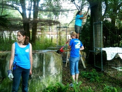 Volunteers, Staff and Interns give Moses and Bailey's cage an overhaul
