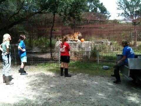 Intern Katy gave TJ his pumpkin and intern Marnell gave Alex his