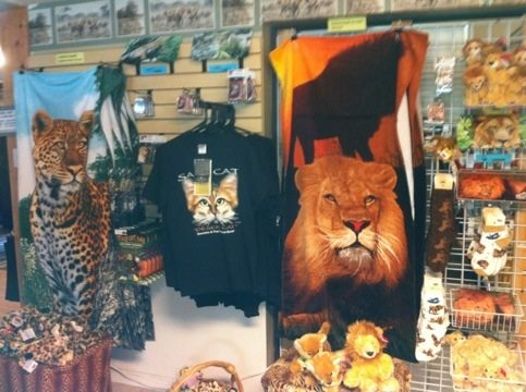 Get your holiday shopping done early, online here BigCatRescue.biz