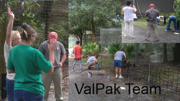 ValPak Team paints barricades at Big Cat Rescue on Saturday