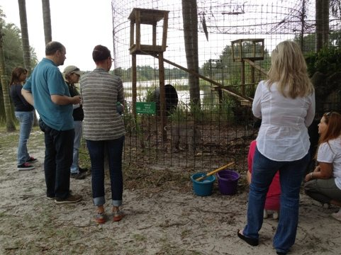 Jennifer R Leads a Keeper Tour to Max the Bobcat