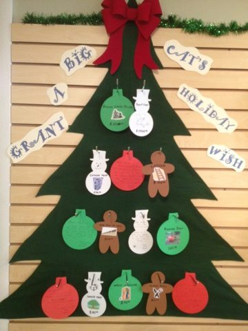 A fun way to grant the cats' holiday wishes created by staff