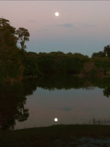 Moonlight reflection in the lake at the sanctuary