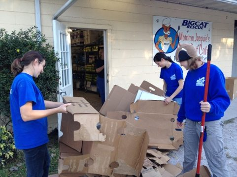 Interns flatten the food boxes for recycling