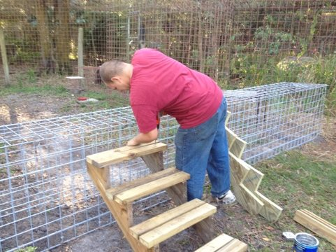 Victor builds stairs over the cat tunnels that join cat-a-tats