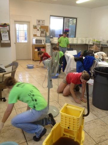 A visiting group of vet students helped scrub every inch of the floors