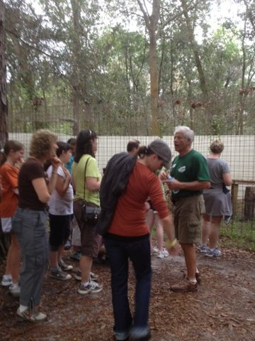 Green Shirt Volunteer Jon giving a tour at Big Cat Rescue