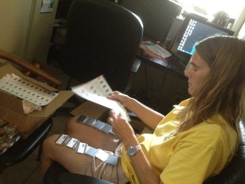 Volunteer Committee Member Sharyn putting on labels in Gift Shop