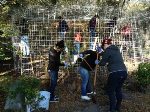 Paul Mitchell Pet Club Volunteer Project at Big Cat Rescue