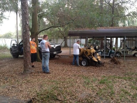Mel Smith and crew did a great job grinding down stumps for us