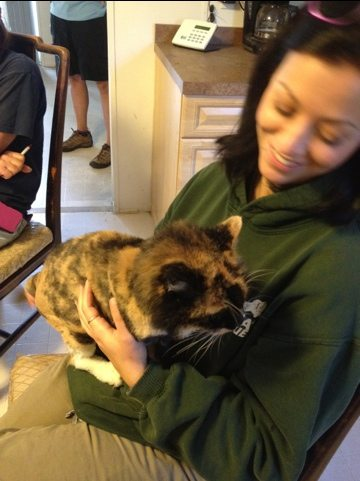 Jennifer Flatt holds Callie the calico during staff meeting