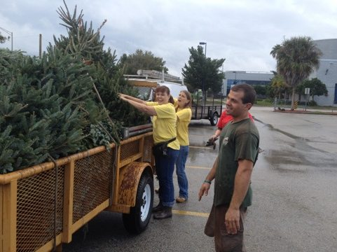 Kim, Sharyn, Elaina and Jarred stack Christmas trees on trailer