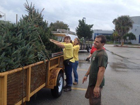 Kim, Sharyn, Elaina and Jarred stack Christmas trees on trailer