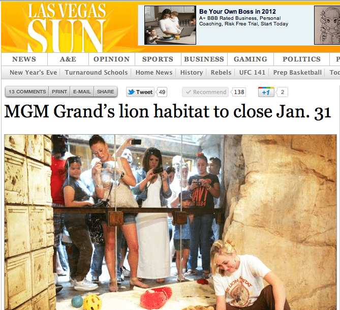 MGM Permanently Closes Lion Exhibit and Sends Cats Back to Keith Evans of The Cat House