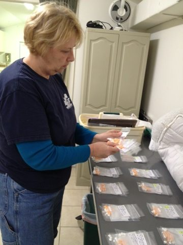 Master Keeper Becky laying out the meds for all our old cats