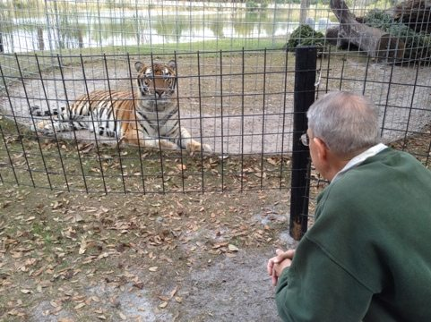 Howie talking to Andre the tiger while our guests talked to Joseph the lion
