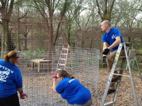 Interns Skyler, Amber and Evan ring the seams in the first row of cage