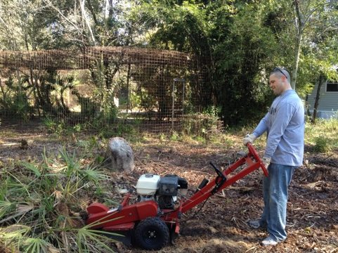 Army volunteer grinding down the bamboo stumps so we can mow
