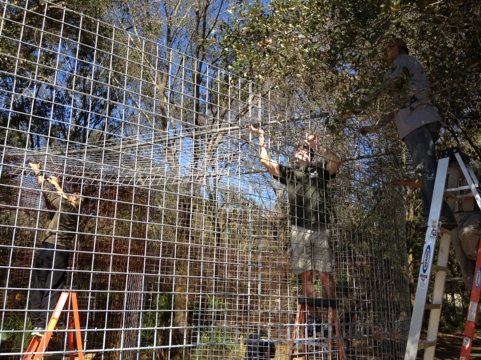 Cage roof panels slide across poles as rails and then are secured