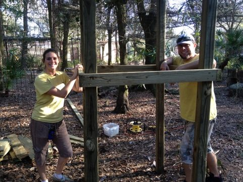 Jennifer and Darren Holley building another great jungle gym for cats