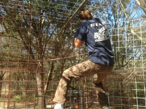 Gale hanging at 12 foot height while ringing the cage wall together